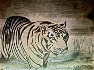 photo tigre sur bois