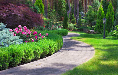 Devis entretien jardin recevez jusqu 39 3 devis entretien for Entretien jardin locataire